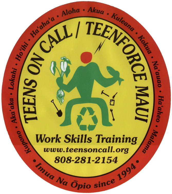 Teens On Call Logo & Values